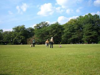 植物園芝生1