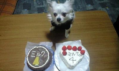 クぅー 4歳のバースディケーキ