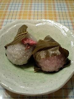 桜一輪道明寺