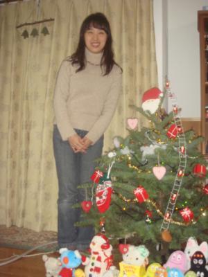 2008.11.21  IKEA 生もみの木1