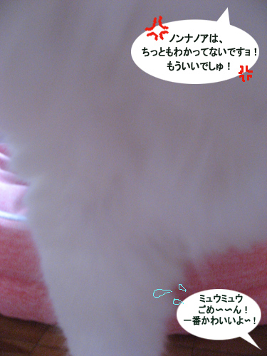 11-1IMG_1040.jpg