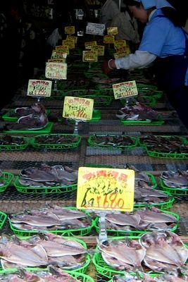 沼津港で、おいしいものを、たらふく喰らった~ぁっ。