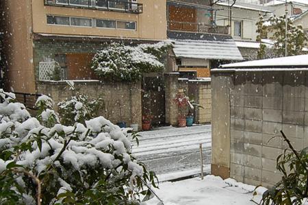雪(自宅前)