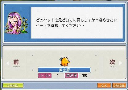 Maple0000_20090417201853.jpg