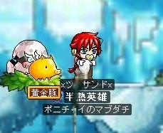 Maple090811_171809.jpg