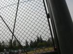アイ撮影野球