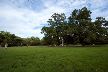 栗林公園北芝生広場