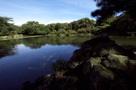 栗林公園 群鴨池