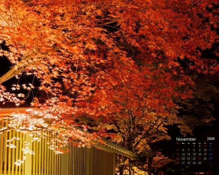 カレンダー11月