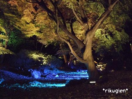 20081130rikugien3.jpg