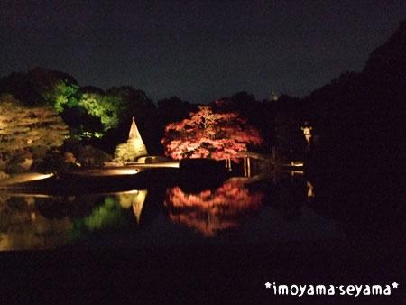 20081130rikugien4.jpg