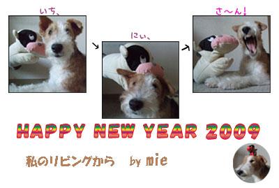 20090106nengajo.jpg