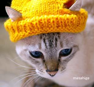 IMGP1233れお帽子