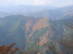 川苔山山頂からの景色