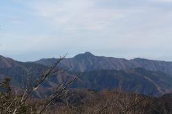 三頭山から見た大岳山