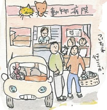 猫発見パート2の2