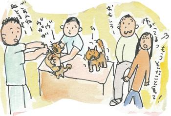 猫発見パート2の5