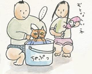 猫おとなしい