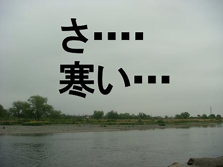 20090418DSC00322.jpg