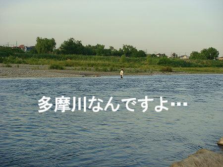 20090518DSC00626.jpg