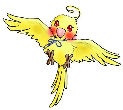 wインコ(ミクシィ用)鳥のみ