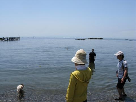 Img_0549-2009-umi-lino11.jpg