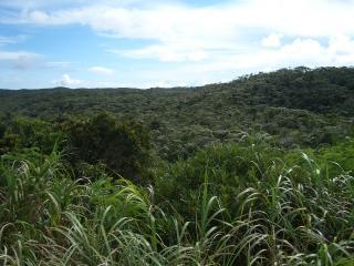 沖縄旅行 -風景-