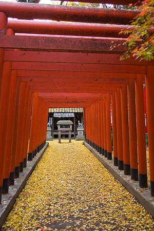 小牧山稲荷神社の朱鳥居