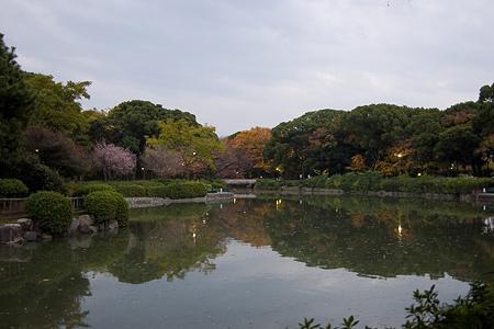 名城公園-1