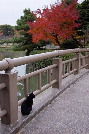 名城公園-2