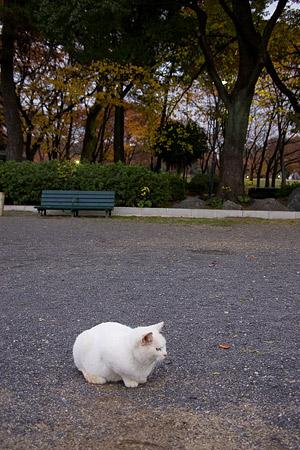 名城公園-4