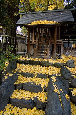 那古野神社-10