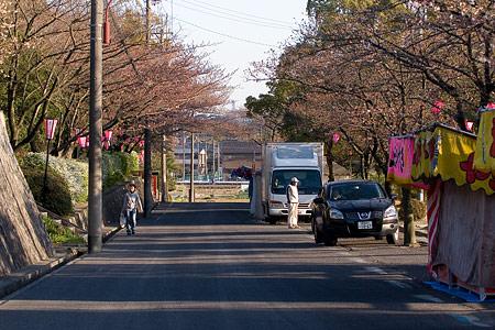 近所桜3月-4