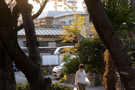 香流川桜1-6