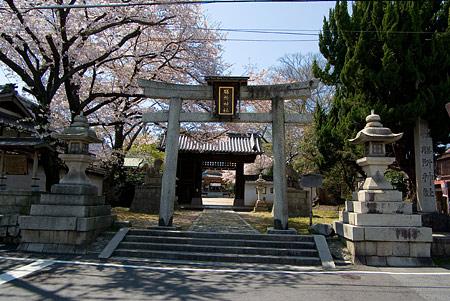 膳所神社-1