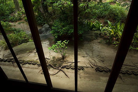 古いガラス越しに見る庭