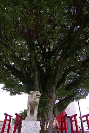 桑名神社1-9