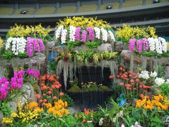 garden+繝輔Λ繝ッ繝シ繝峨・繝?+015_convert_20090315223831