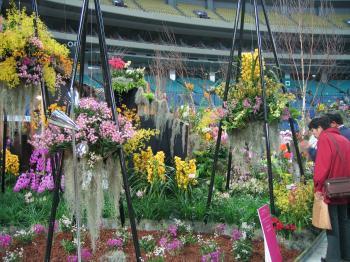 garden+繝輔Λ繝ッ繝シ繝峨・繝?+023_convert_20090315225132