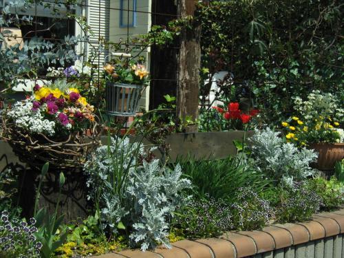 garden+002_convert_20090410232029.jpg