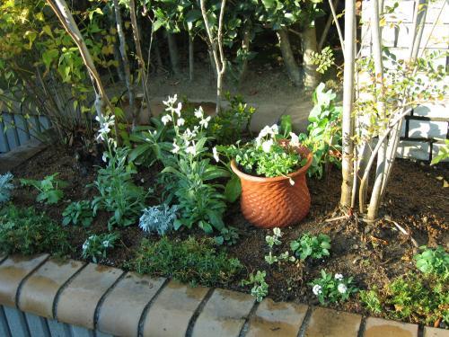 garden+007_convert_20081202180617.jpg