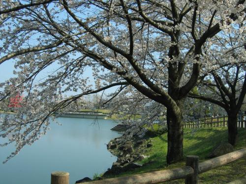 garden+009_convert_20090407015458.jpg