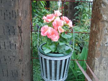garden+010_convert_20081031192752.jpg