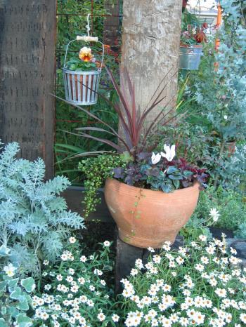 garden+011_convert_20081113125846.jpg