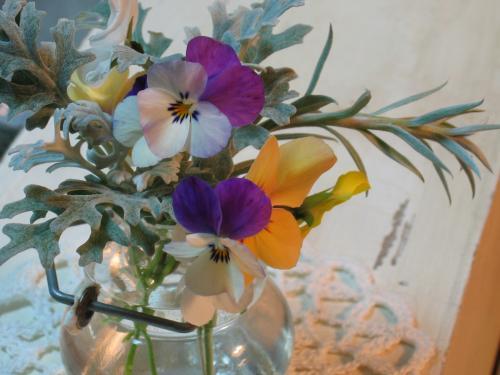 garden+012_convert_20090109013539.jpg