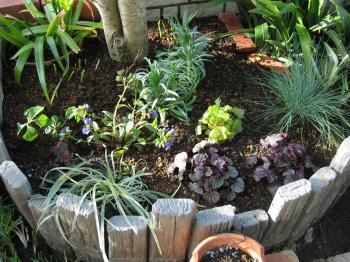 植え込み完了の花壇