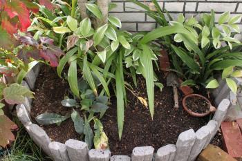 花壇の掘り返し