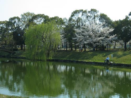 garden+016_convert_20090407020623.jpg