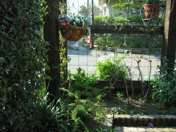 garden+017_convert_20090325223041.jpg