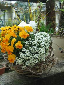 garden+018_convert_20090401024833.jpg